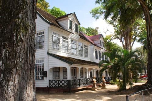 huis palmen