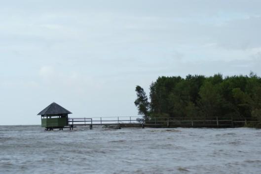 -Best of Suriname - Vogelspot huisje aan de kust - Warappakreek
