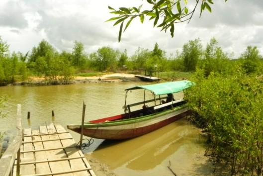 -Best of Suriname - Warappakreek