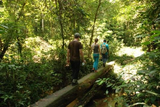 -Natuur en Avontuur - Pingpee - jungle wandeling