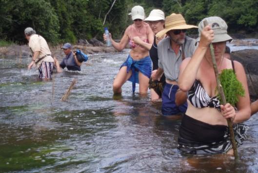 -Sipaliwini - Dschungeltocht door de rivier