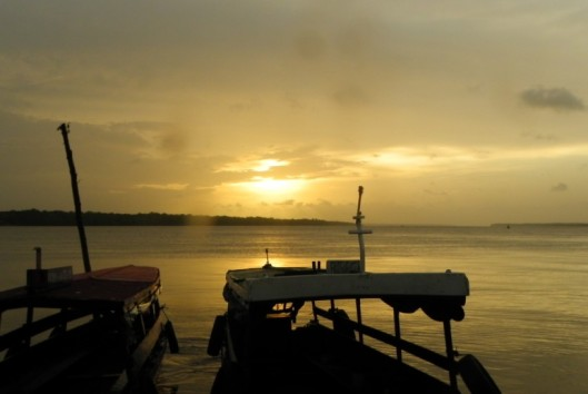 -dolfijnen-sunset-suriname