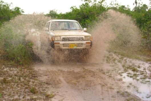 -jeepsafari-savanna
