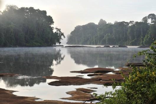 ochtend damp boven suriname rivier