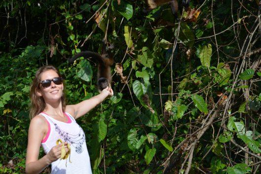 anaula-suriname-jungle