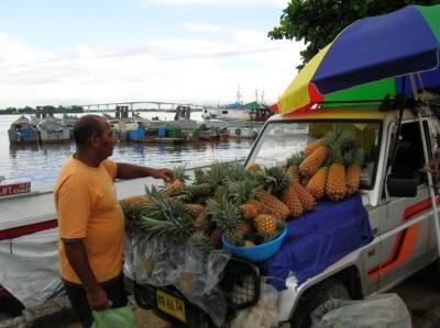 ananassen vracht