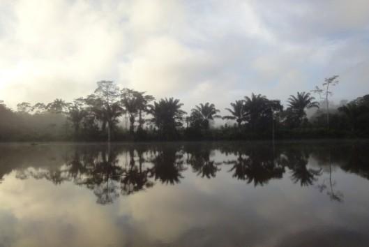 rivier suriname