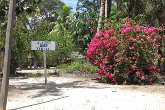 avanavero jungle avontuur strand