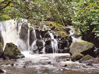 waterval suriname natuur