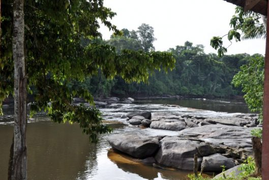 Pingpe Resort Uitzicht Suriname Rivier