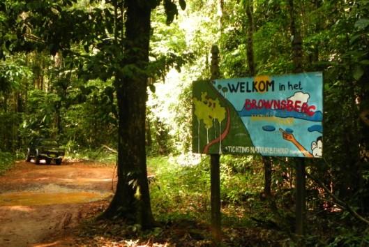 brownsberg natuurpark welkom