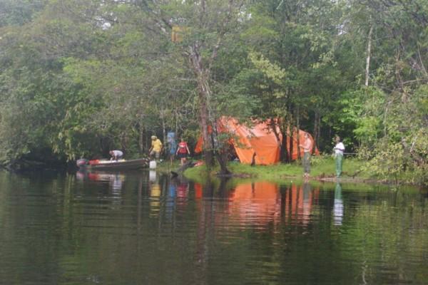 coesewijne suriname hangmattenkamp