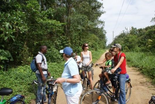 plantage peperpot fietsen koffieplantage