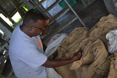 beheerder plantage katwijk
