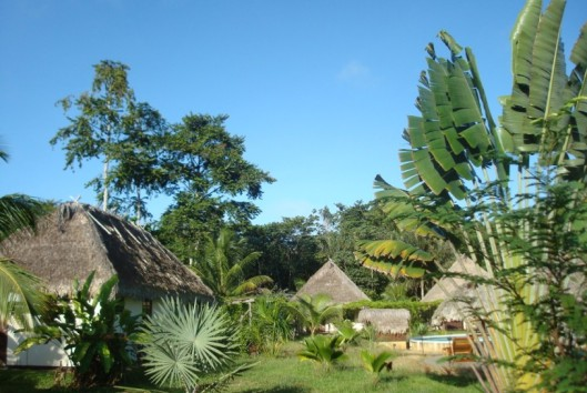 hotel de plantage huisjes
