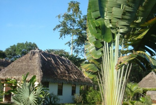hotel de plantage suriname