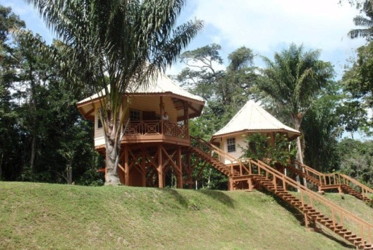 Kabalebo Nature Resort bungalow