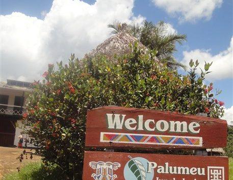 Palumeu-Jungle-Lodge