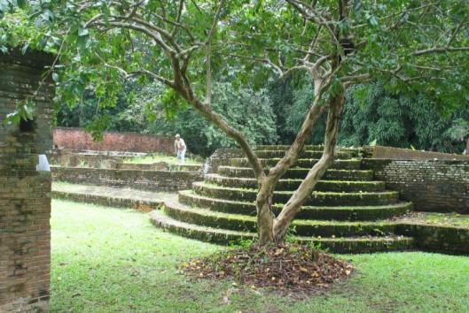 jodensavanne ruines suriname