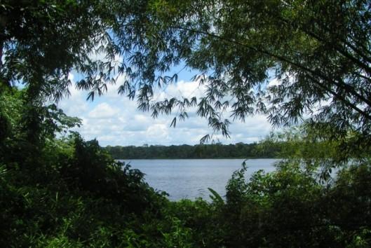 jodensavanne uitzicht rivier suriname