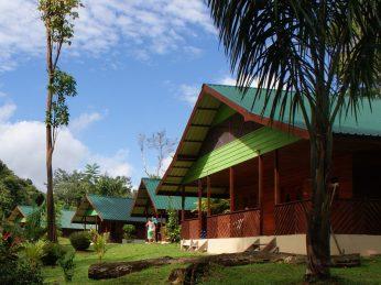 anaula nature resort suriname