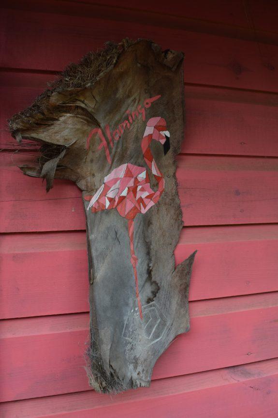 flamingo huisje mondi lodge curacao