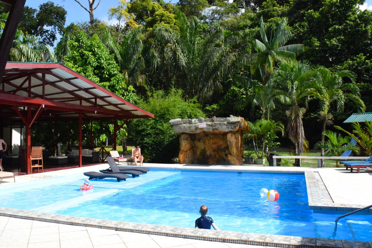 swimmingpool jungle resort anaula