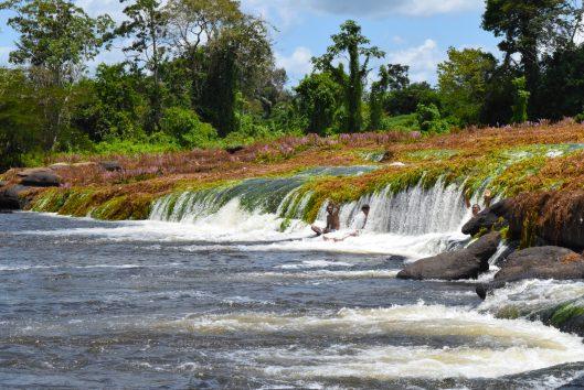 tapawatra sula bovensuriname rivier