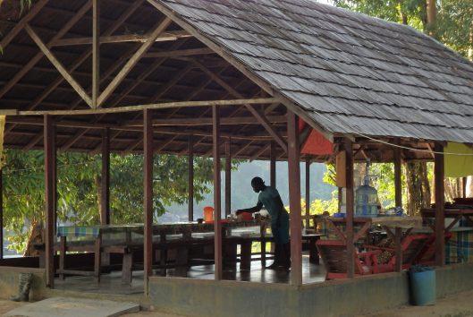 pingpe jungle resort suriname