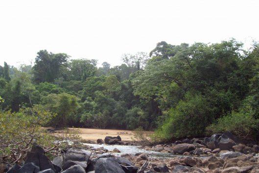 wannawiro nature park (32)