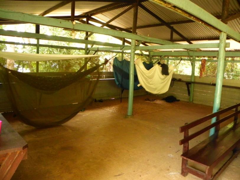 brownsberg hangmatten kamp