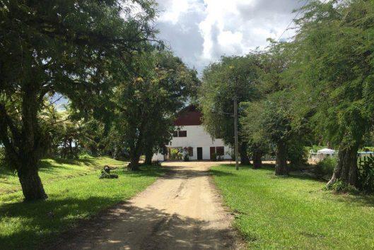 plantage Katwijk huize Evelyne (24)