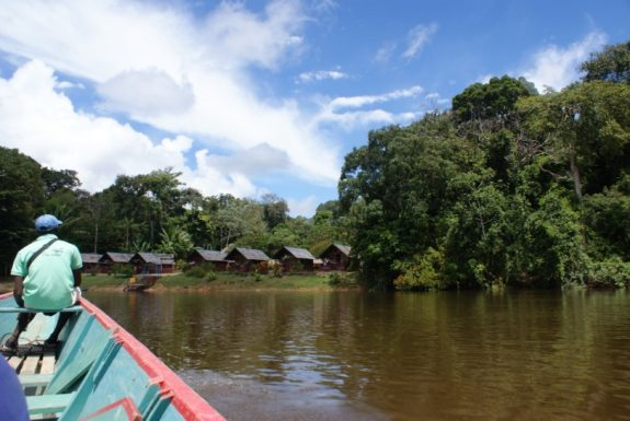 danpaati river lodge suriname