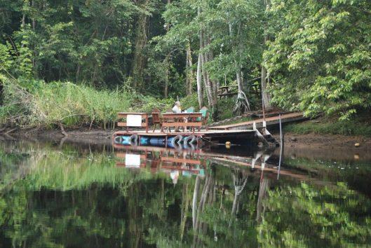 Suriname rondreis Maratakka flora fauna