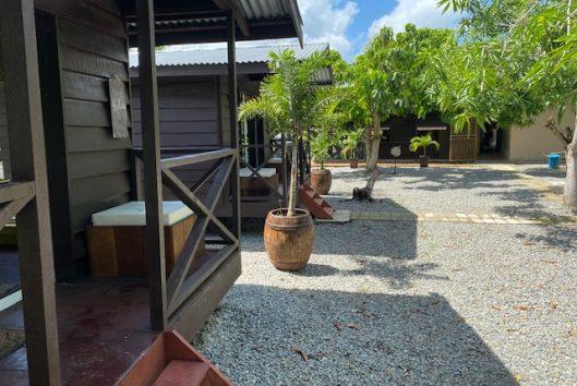 Suriname Holidays - Peperhol (31)