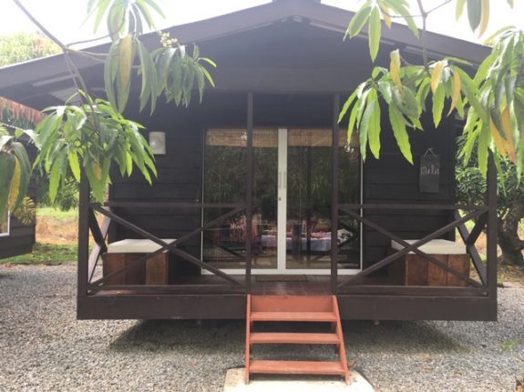 Suriname Holidays Peperhol