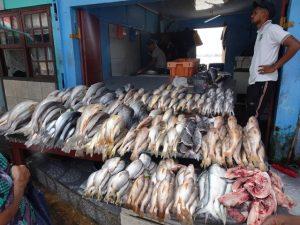 centrale markt vis kraam Paramaribo