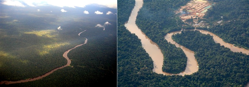 suriname jungle luchtfoto