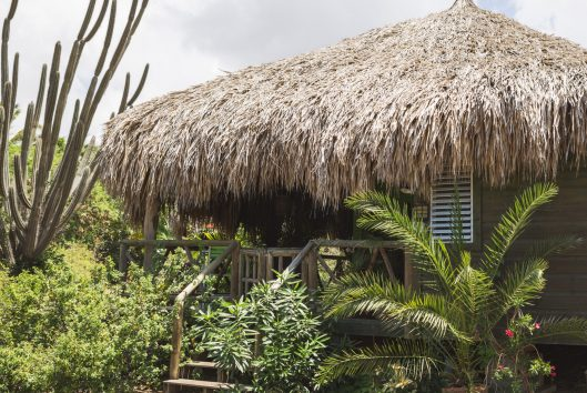 mondi lodge palapa
